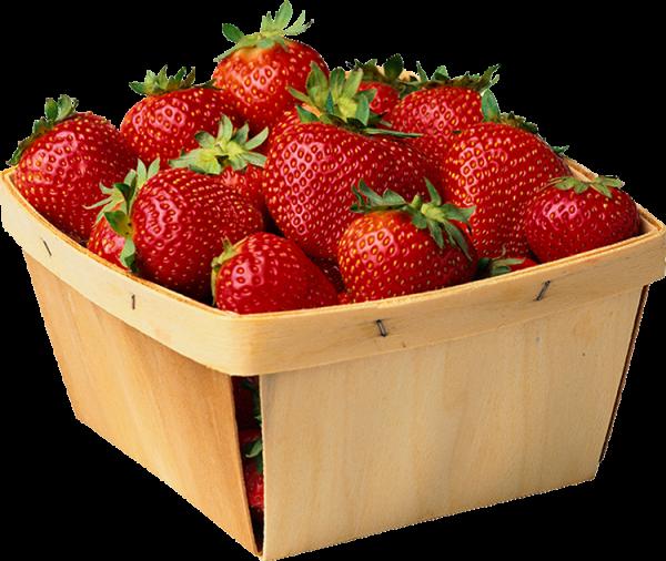fraise barquette 250 g local Alexandre Vandrome